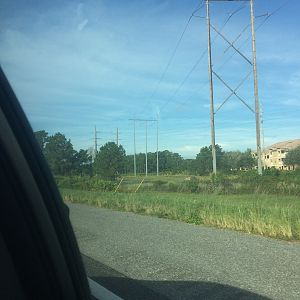 Kissimmee Florida power lines