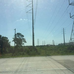 Pinellas pylons and lattice tower