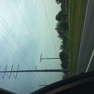 Lutz power line