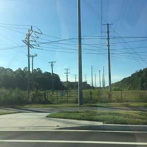 Tampa power lines